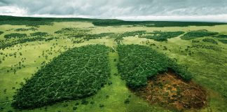 Filosofia Ambientale